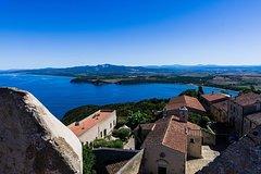 Private tour from Livorno port: the Etruscan coast & wine