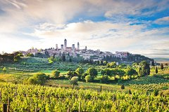 Private tour from Livorno port to San Gimignano & Volterra