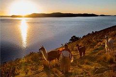 City tours,Tours with private guide,Specials,Excursion to Lake Titicaca,La Paz Tour