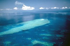 Actividades,Actividades aéreas,Excursiones desde Cairns,Excursión a Barrera de Coral,Excursión a Green Island