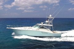 City tours,Activities,Tours with private guide,Water activities,Specials,Cozumel Cruise