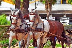 Excursión de un día a Jerez y Cádiz desde Sevilla