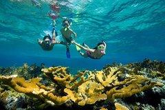 Hurghada Red Sea and Sinai Hurghada Day Tour Giftun Island Snorkeling Trip 22099P25