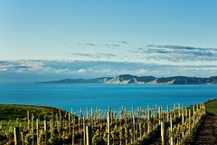 Imagen Shore Excursion: Blenheim Wine Tour from Picton