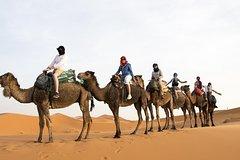 Salir de la ciudad,Excursions,Excursiones de más de un día,Multi-day excursions,Camel ride, quad, air balloon...,Palmeral de Marrakech