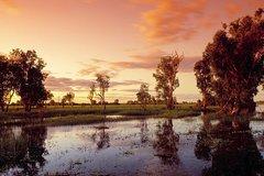 Imagen 3-Day Kakadu National Park and Arnhem Land Explorer Tour from Darwin
