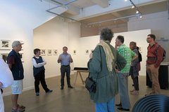 Join the locals: Walk and Talk dealer Art Gallery in Wellington
