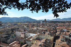 City tours,Activities,Tours with private guide,Water activities,Specials,Excursion to Pisa,Excursion to Lucca