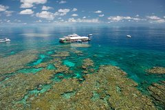 Imagen Great Barrier Reef Day Cruise from Cairns Including Snorkeling and Marine Biologist Presentation