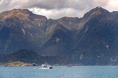 Imagen Queenstown Super Saver: Doubtful Sound Cruise plus Walter Peak High Country Farm Tour