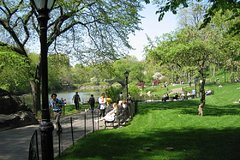 Imagen Central Park and Upper East Side Walking Tour