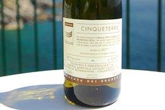 Cinque Terre Wine Tasting