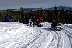 Snowmobile the Sierra's from Reno