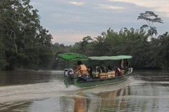 Imagen 3-DAYS PRIVATE UPPER AMAZON TOUR