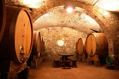Winery Tour in Chianti with Wine Tasting
