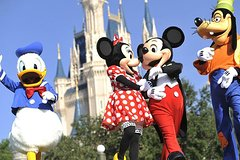 Paris and Disneyland Paris Tour from London
