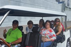 One Hour Private VIP Hollywood Tour