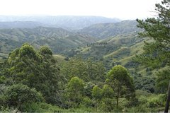 Durban Shore Excursion: Valley of 1000 Hills and PheZulu Tour