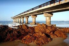 Port Elizabeth Shore Excursion: Half Day City Tour including SAMREC