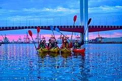 Imagen Half-Day Melbourne Kayak Tour