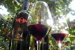 Vesuvius Wine Tour Lacryma Christi