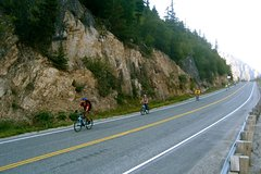 City tours,City tours,City tours,Bike tours,Full-day tours,