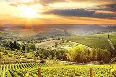 The best of Chianti Classico Wine Private Tour with Dinner in a boutique Es
