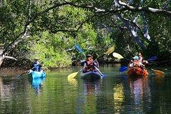 Imagen Brunswick Heads Kayak Eco-Tour and Stand-Up Paddleboarding