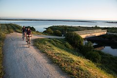 Imagen Self-Guided Scenic Bike Ride to Coastal Wineries from Napier