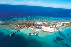 Salir de la ciudad,Actividades,Excursiones de un día,Actividades acuáticas,Deporte,Tour por Isla de Aruba