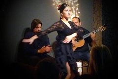 Imagen Small Group Valencia Tour by Bus with Tapas and Flamenco Show
