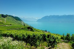City tours,Tours with private guide,Specials,Geneve Tour,Excursion to Montreux