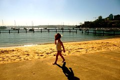 Imagen Morning or Afternoon Sydney Highlights Tour with a Local Guide