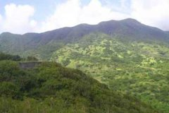 Imagen St Kitts Volcano Hiking and Sightseeing Excursion