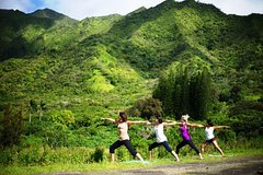 Honolulu Hawaii Jungle Waterfall Hike: Beachfront Yoga and Sacred Paths of Pali-Manoa 25862P5