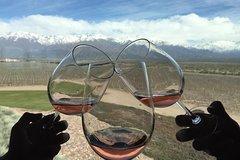 Imagen Excursión privada: región vinícola de Luján de Cuyo desde Mendoza