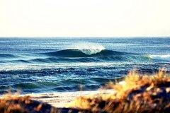 7-Day Byron Bay, Evans Head and Moonee Beach Surf Safari from Brisbane, Gold Coast or Byron Bay