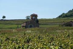 City tours,Tours with private guide,Specials,Lyon Tour,Beaujolais Vineyard