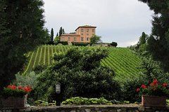 Siena, San Gimignano and Chianti Wine Region Small Group Day Trip from Flor