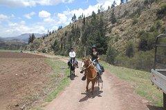 Imagen Horseback Riding Cusco: Experience the Peruvian Paso Horses