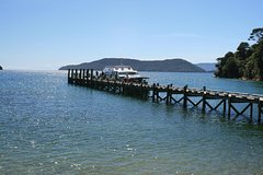 Imagen Full-Day Marlborough Catamaran Cruise with Wine Tour and Lunch
