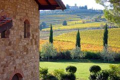 Day Trip from Florence: Exclusive Chianti Wine Tour with a driver-guide