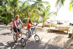 City tours,City tours,City tours,Gastronomy,Bike tours,Gastronomic tours,Gastronomic tours,