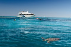 Imagen Lady Musgrave Day Trip from Bundaberg Including Snorkeling, Glass Bottom Tour and Guided Island Walk