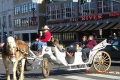 City tours,City tours,Other vehicle tours,