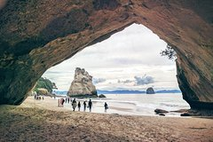 Imagen Private Cathedral Cove Day Trip from Auckland