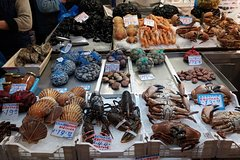 Best Athens Food Tours