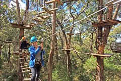 Imagen Mornington Peninsula Enchanted Adventure Garden Ziplining and Canopy Tour