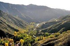 Imagen Excursión a Villavicencio desde Mendoza