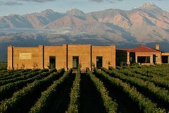 Imagen Wine Tour Experience in Uco Valley from Mendoza (full day)